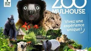ZOO DE MULHOUSE : 2021 horaires, tarifs, animaux à voir, animations